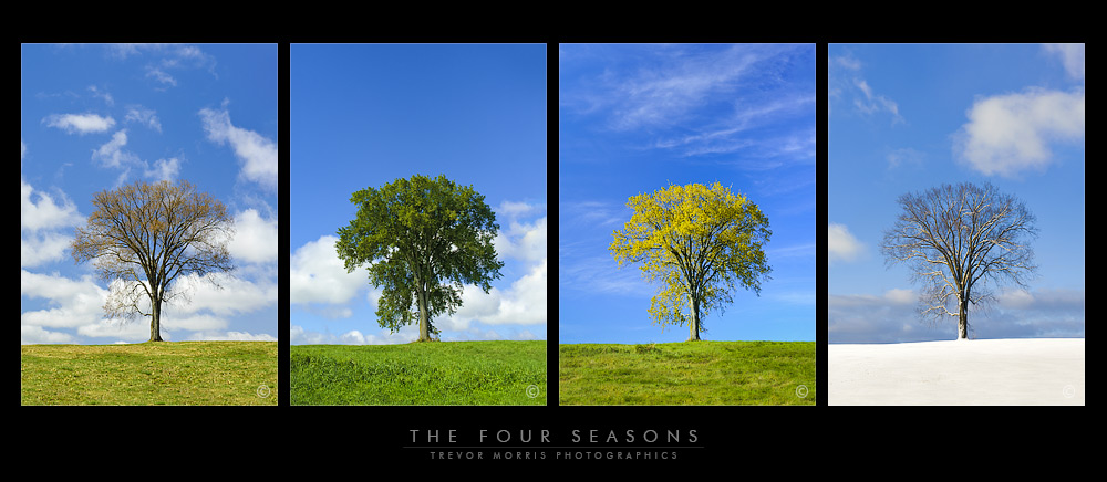 Training with the Seasons  By Jen Fuller
